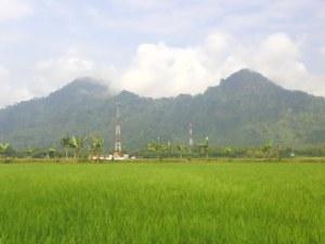 kampung tempursari lumajang